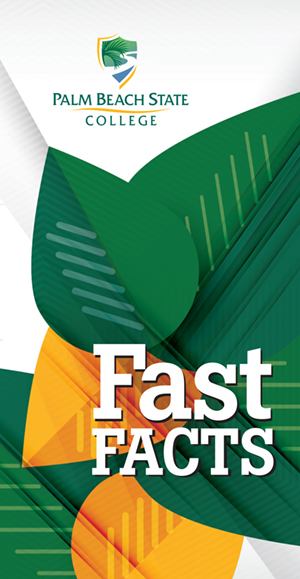 Fast Facts brochure icon
