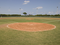 baseball full view home plate to outfield