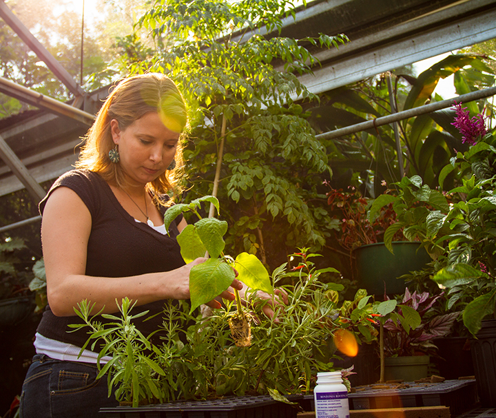 Environmental Horticulture Program