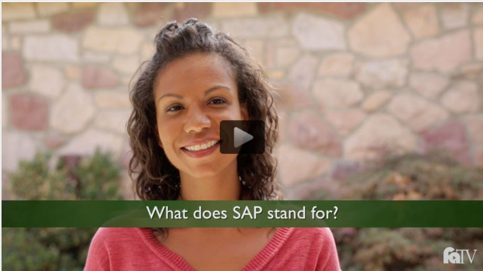 What does S.A.P. stand for? Explained in English.