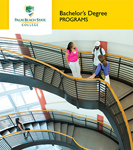 Bachelor's Program brochure cover