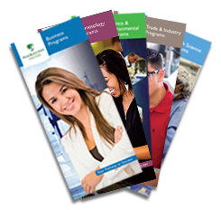 program and college brochures