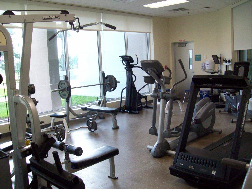 Free weights and gym equipment