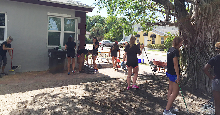 Volleyball service project