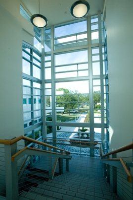north stairway at bio science lobby entrance