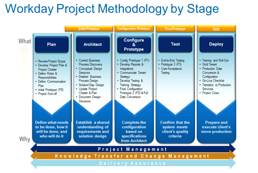 Workday stage diagram for decorative purposes